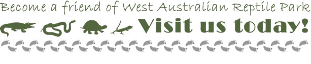 Become a friend of West Australian Reptile Park